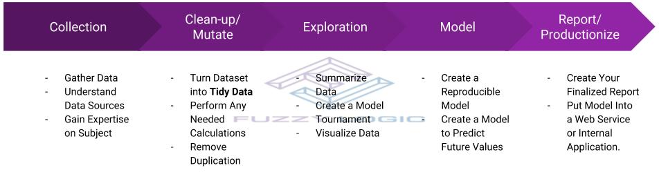 Collection Clean-up/Mutate Exploration Model Report/Productionize